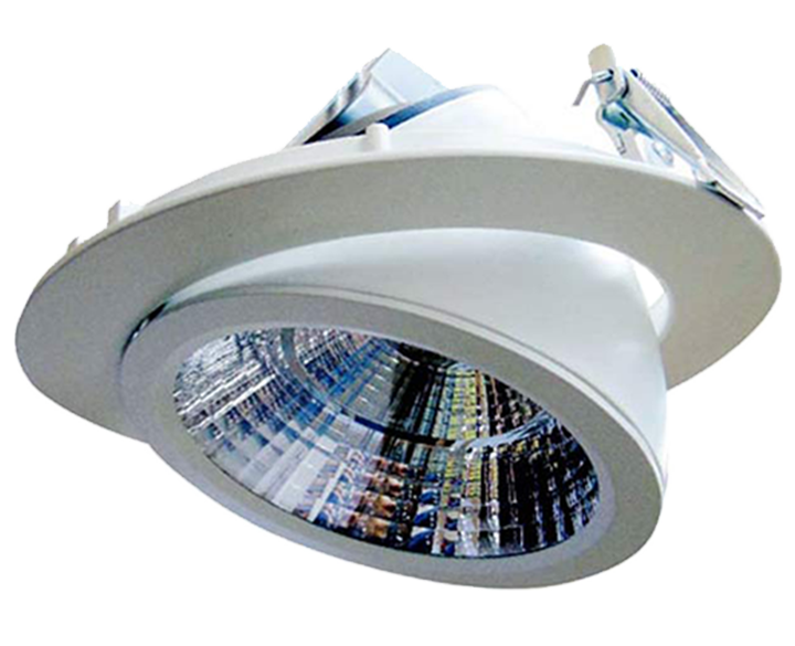 LED Round COB Swivel (H13-30) 30W