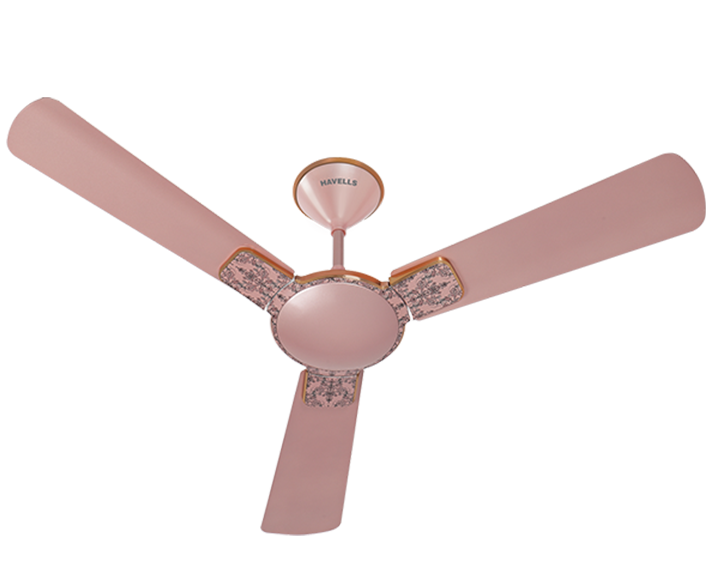 Ceiling Fan Enticer Art