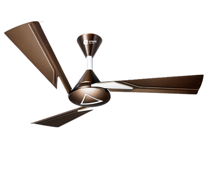 Ceiling Fan Orina