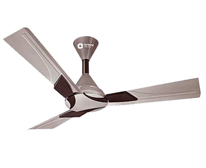Ceiling Fan Wendy Shine