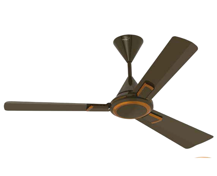 Ceiling Fan Vistoso